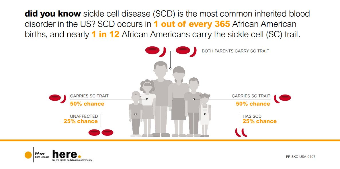 Diving into the Genetics of Sickle Cell Disease - Greater