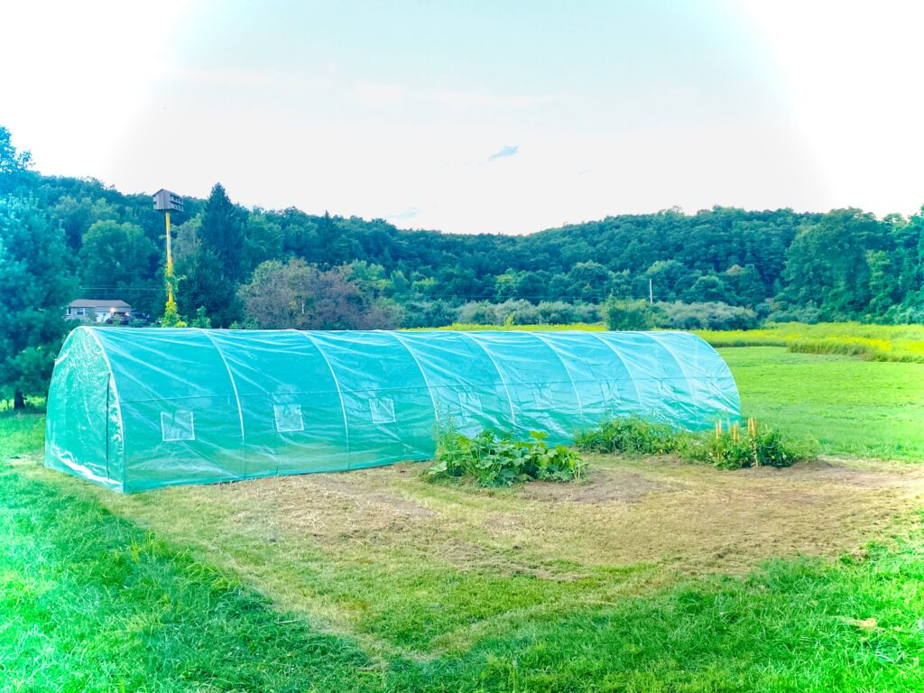 A greenhouse on MSGLV Farms in Pennsylvania, a 22 acre property owned by Michael J.H. Muhammad and his wife Anecqua.